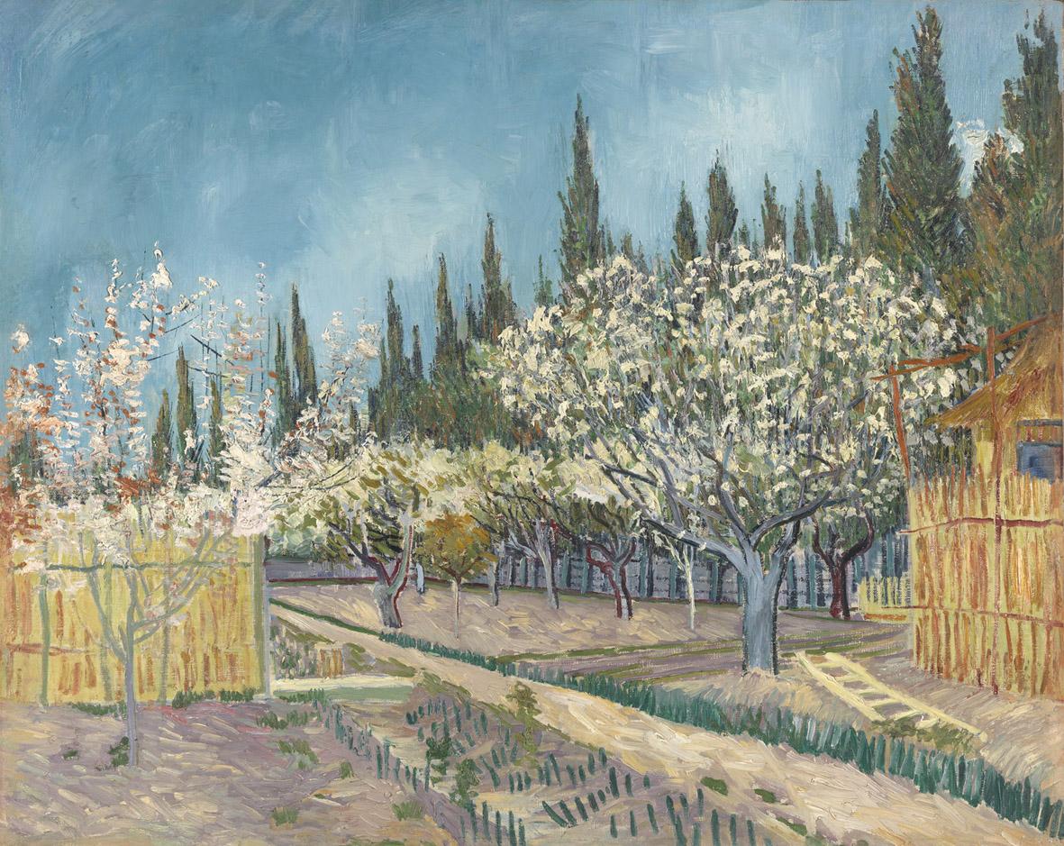 Vincent van Gogh, Alberi da frutto tra i cipressi, 1888, olio su tela, cm 64.9x81.20