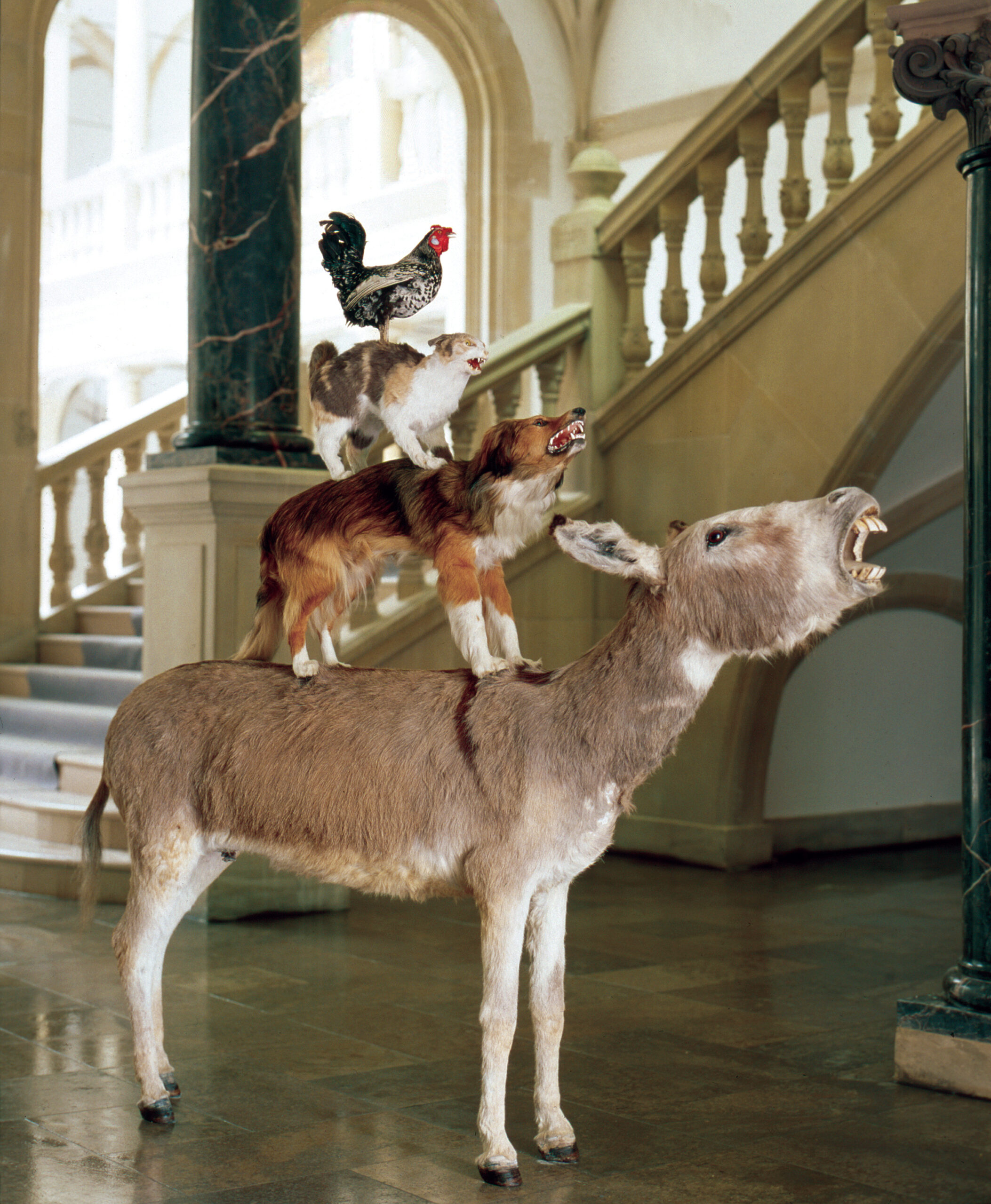 Maurizio Cattelan, Love Saves Life, 1995, Taxidermied donkey, dog, cat, rooster, 190 x 120 x 60 cm  Installation view, Skulptur Projekte, Westfälisches Landesmuseum, Münster, 1997, Courtesy Maurizio Cattelan's Archive, Photo Roman Mensing