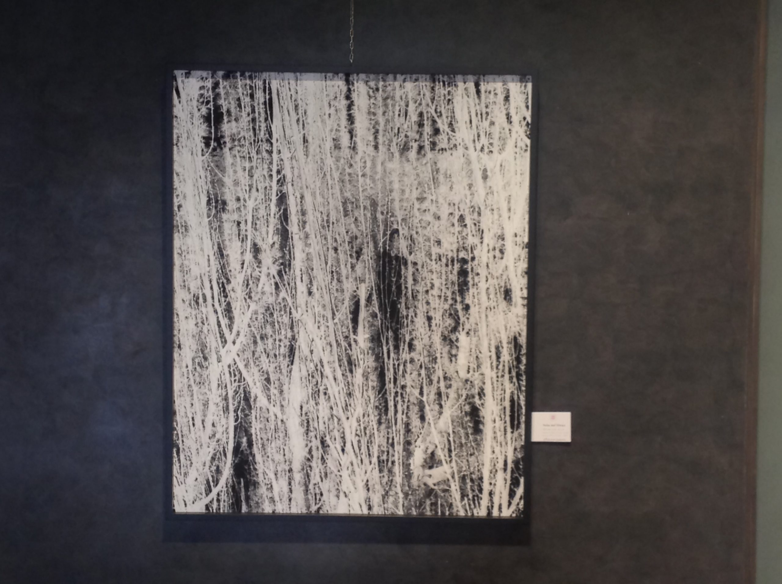 Riccardo Squillantini, Rumori silenziosi, mostra personale, a cura di Alain Chivilò_Casa dei Carraresi_Treviso (12)
