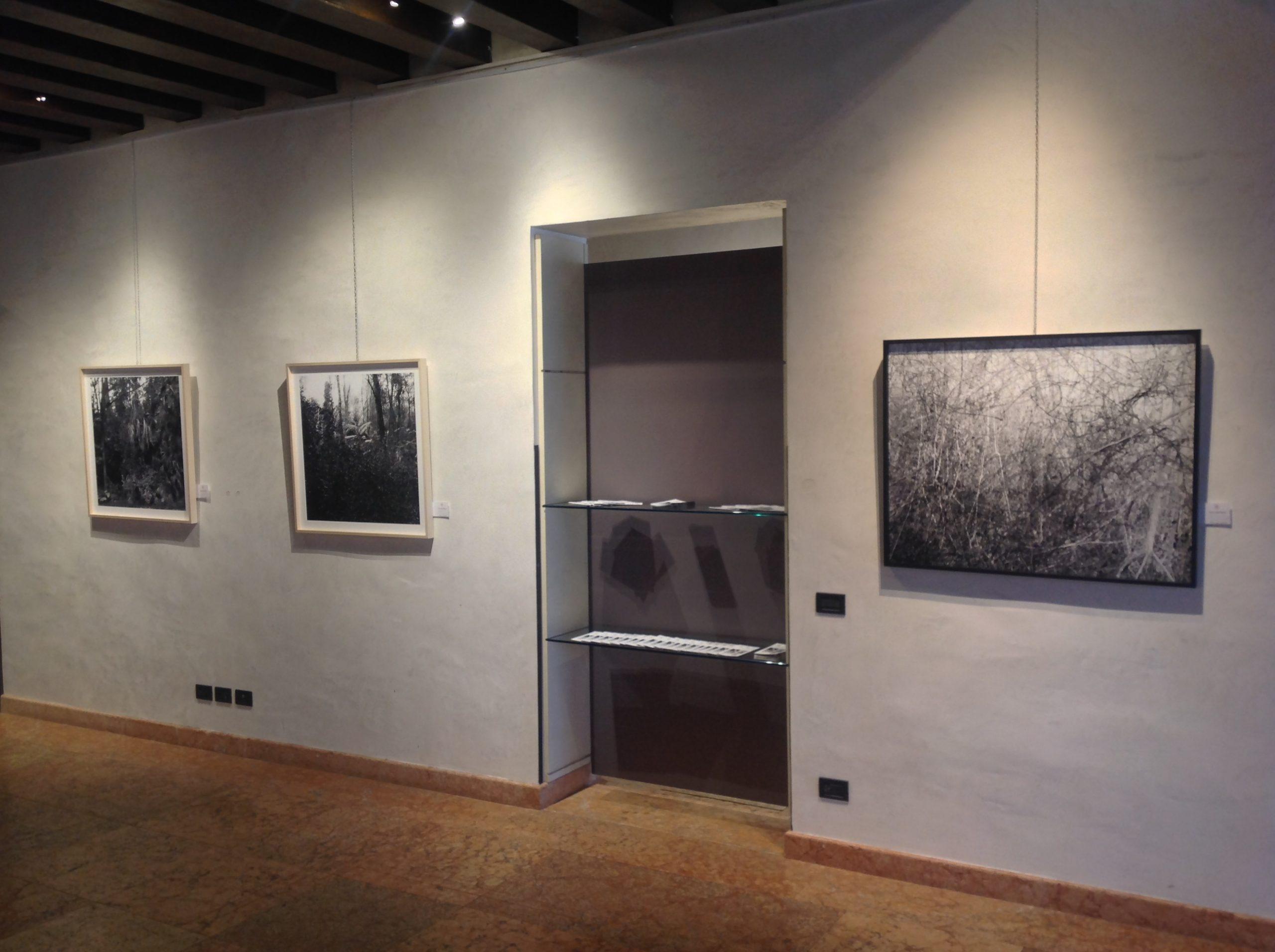 Riccardo Squillantini, Rumori silenziosi, mostra personale, a cura di Alain Chivilò_Casa dei Carraresi_Treviso (7)
