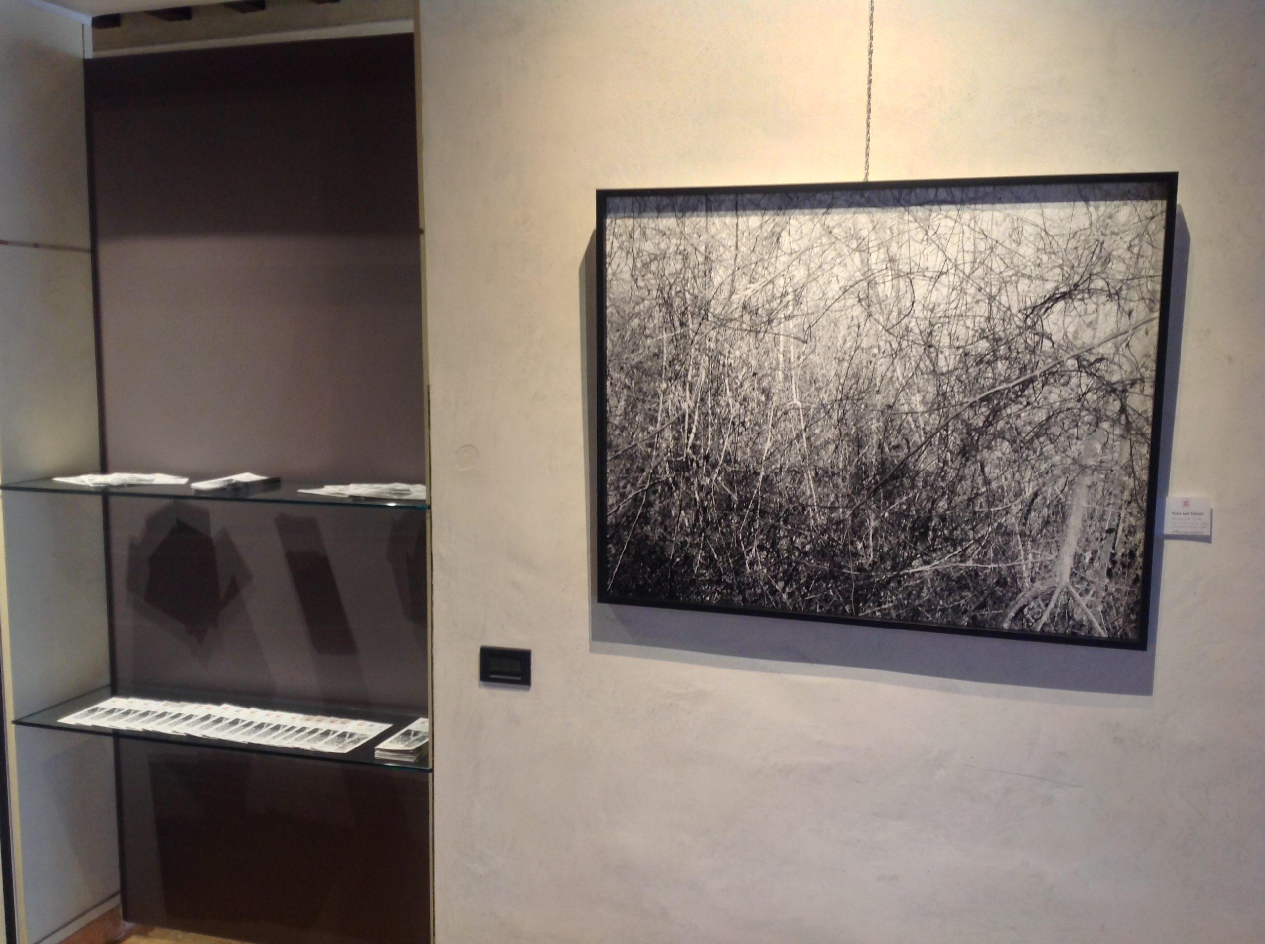 Riccardo Squillantini, Rumori silenziosi, mostra personale, a cura di Alain Chivilò_Casa dei Carraresi_Treviso (8)
