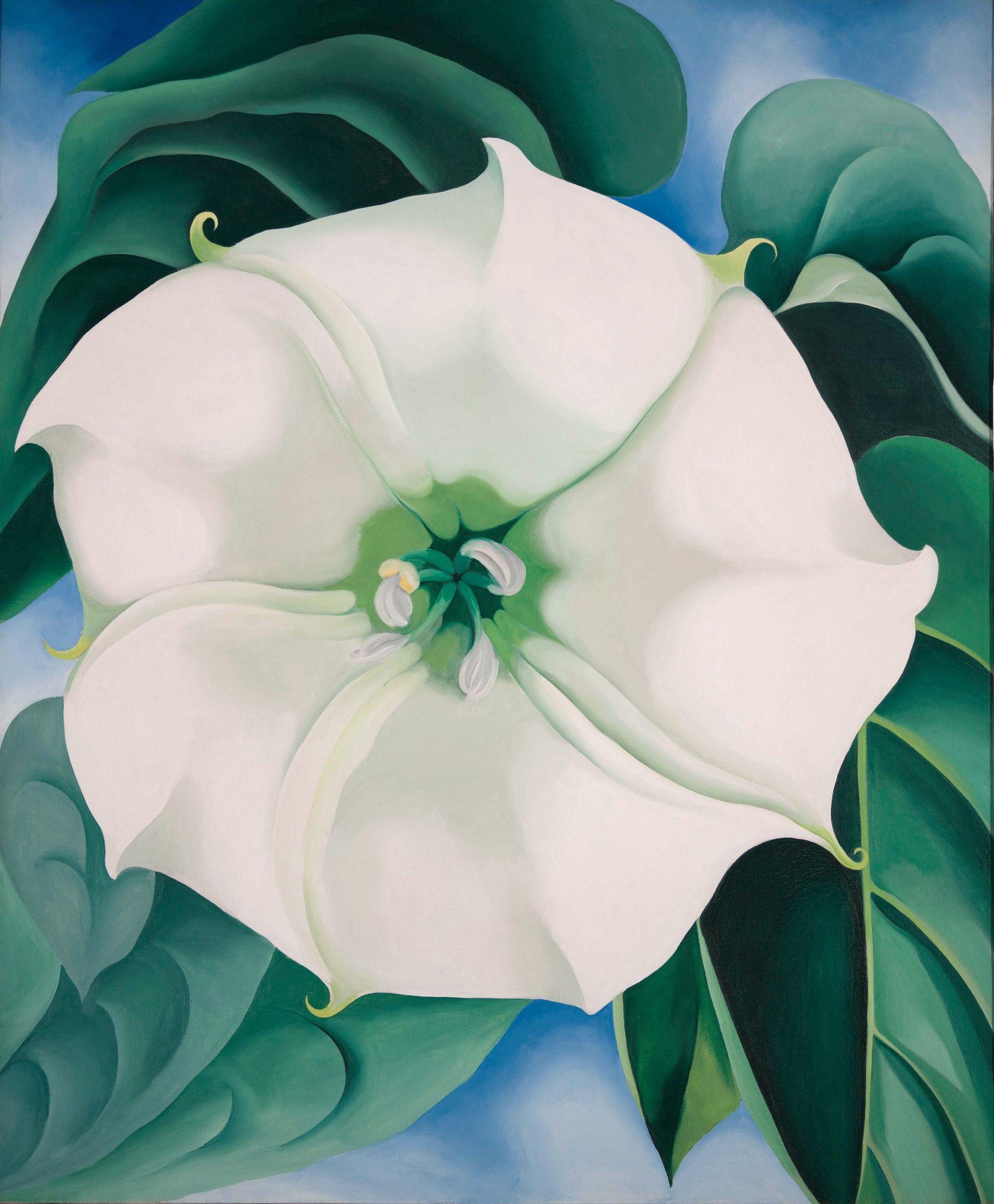 Georgia O'Keeffe Jimson Weed/White Flower No. 1, 1932 Huile sur toile, 121,9 × 101,6 cm Crystal Bridges Museum of Art, Bentonville, Arkansas American © Crystal Bridges Museum of American Art. Photography by Edward C. Robison III  © Georgia O'Keeffe Museum / Adagp, Paris, 2021