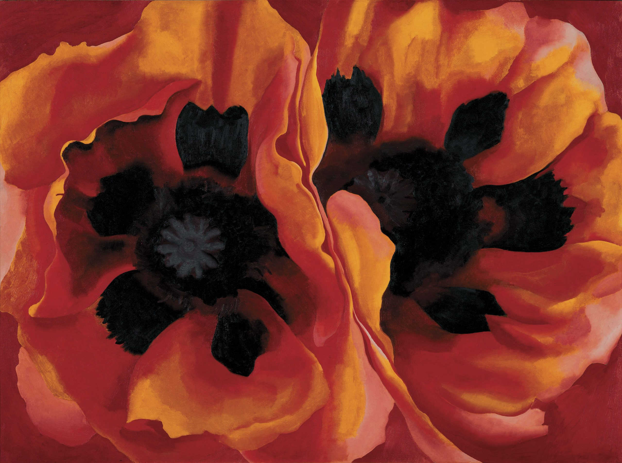 Georgia O'Keeffe, Oriental Poppies, 1927 Huile sur toile, 76,7 × 102,1 cm Collection of the Frederick R. Weisman Art Museum at the University of Minnesota, Minneapolis. Museum Purchase (1937.1) Image Weisman Art Museum at the University of Minnesota, Minneapolis © Georgia O'Keeffe Museum / Adagp, Paris, 2021